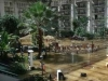 opryland-flood-2